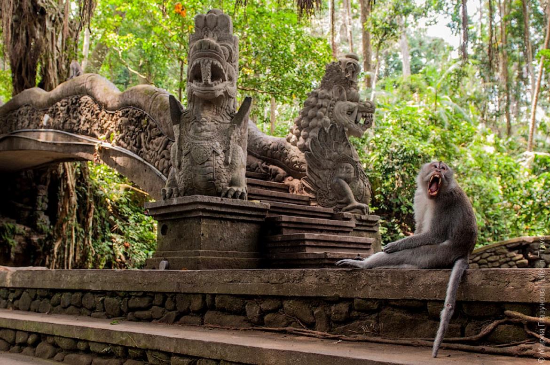 Індонезія курорти