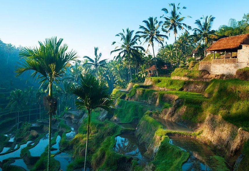 острів Балі відпочинок