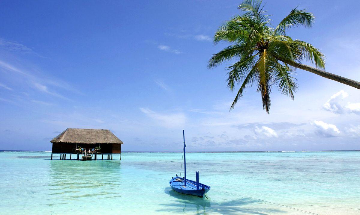 Шрі Ланка відпочинок